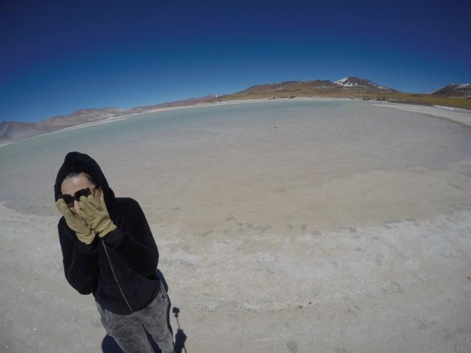 Lagunas Miscanti Y Miñiques, Salar de Talar e Laguna Tuyajto – Deserto do Atacama